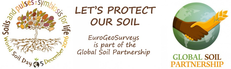 World Soil Day  5 Decembre
